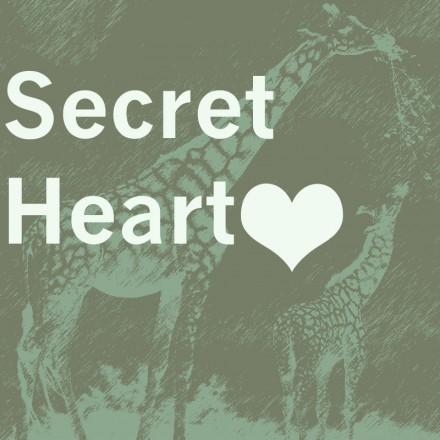secret heart a0917249712_10
